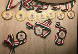 Alcune medaglie d'oro vinte dai soci Battista Ruffino- Carlo Rionda - Mantovan Riccardo al concorso nazionale di modellismo statico di Chiet 2018